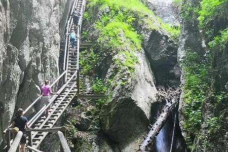 Die Bärenschützklamm mit ihren zahlreichen Brücken ist bei Besuchern sehr beliebt (Archiv). Foto: Heimo Suznevic/APA/dpa