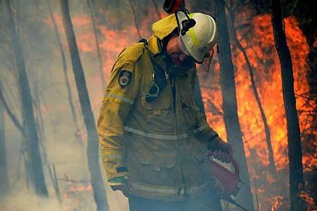Die Brände hätten eine Fläche von rund 5,5 Millionen Hektar zerstört, etwa 6,2 Prozent des im Südosten von Australien gelegenen Bundesstaates New South Wales. Foto: Jeremy Piper/AAP/dpa