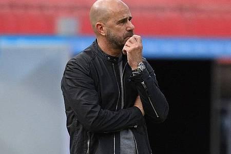 Hat seine Mannschaft für das Spiel gegen Saarbrücken auf fünf Positionen verändert: Bayer-Coach Peter Bosz. Foto: Matthias Hangst/Getty Images Europe/Pool/dpa