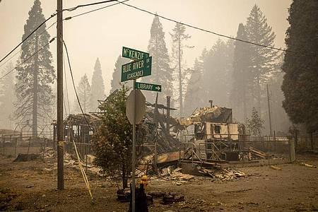 Die verheerenden Waldbrände im Westen der USA haben in den vergangenen Wochen riesige Flächen zerstört. Foto: Andy Nelson/Pool The Register-Guard/Pool/AP/dpa