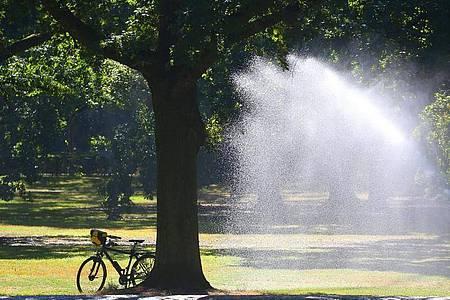 Temperaturen um 30 Grad Celsius wie hier im Tiergarten in Berlin sind bald Geschichte. Tief «Jantra» bringt Abkühlung. Foto: Wolfgang Kumm/dpa