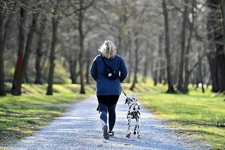 Eine Frau geht im thüringischen Sondershausen mit einem Hund im Park spazieren. Foto: Frank May/dpa