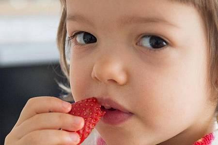 Für Kleinkinder sind Obstsorten mit wenig Zucker ideal - Erdbeeren zählen dazu. Foto: Andrea Warnecke/dpa-tmn