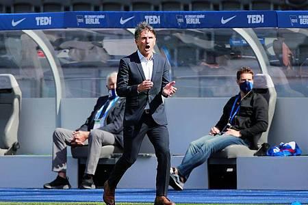 Unter Trainer Bruno Labbadia (M)läufts für die Hertha bislang richtig gut. Foto: Hannibal Hanschke/Reuters Pool/dpa