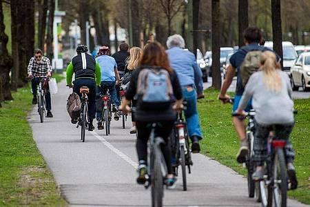 Laut ADAC erfüllt rund jeder dritte Radweg erfüll nicht einmal die jeweilige Mindestbreite. Foto: Lino Mirgeler/dpa