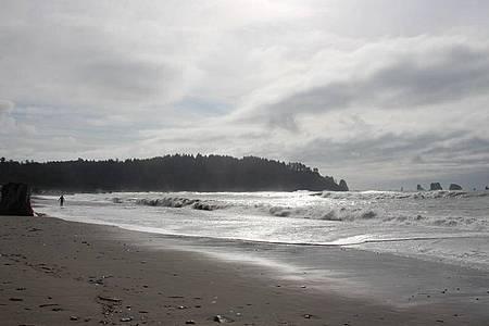 Der Strand der Kleinstadt La Push. Foto: Christina Horsten/dpa