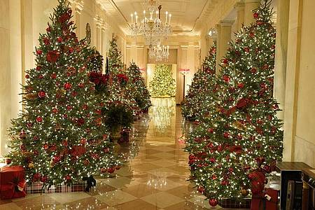 Der Flur, der zum Bankettsaal des Weißen Hauses führt, ist mit Weihnachtsbäumen dekoriert. Foto: Patrick Semansky/AP/dpa