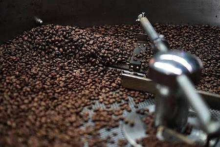 Wie stark darf es sein? Eine dunkel geröstete Bohne ist gut für Espresso, Filterkaffee zum Beispiel braucht etwas hellere Bohnen. Foto: Supremo/dpa-tmn