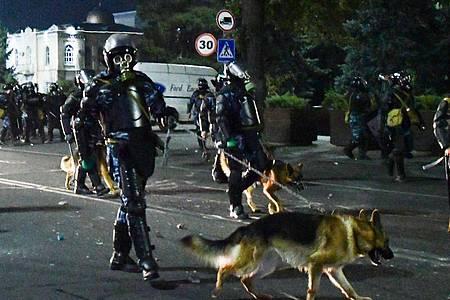 Bereitschaftspolizei mit Hunden zerstreut Demonstranten während einer Kundgebung gegen die Ergebnisse einer Parlamentsabstimmung. Foto: Vladimir Voronin/AP/dpa