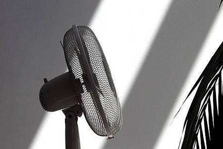 Abkühlung gefällig?Im Sommer kann es im Homeoffice sehr heiß werden. Foto: Karl-Josef Hildenbrand/dpa/dpa-tmn