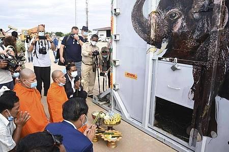 Der Container, in dem der Elefant Kaavan steht, wird bei seiner Ankunft auf dem Flughafen Siem Reap von Mönchen gesegnet. Foto: Pool/POOL Environment Ministry/AP/dpa