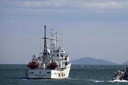 Südkoreas Regierungsschiffe patrouillieren nahe der südkoreanischen Insel Yeonpyeong. Foto: Baek Seung-Ryul/Yonhap/AP/dpa
