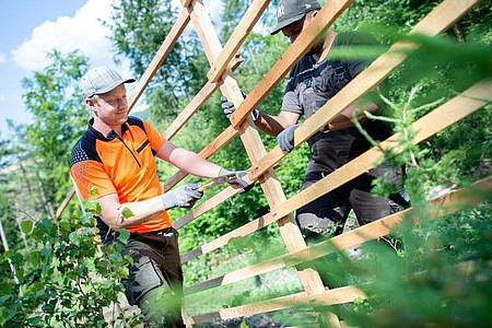 Schutz für die neue Baumkultur: Der angehende Forstwirt Jesco Ihme befestigt mit einem Kollegen ein Hordengatter. Foto: Hauke-Christian Dittrich/dpa-tmn