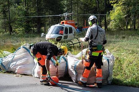 Besatzungsmitglieder binden auf einer Waldlichtung in Rottach-Egern zwei Säcke mit rund 1240 Tannen- und Lärchensetzlingen an einen Hubschrauber. Foto: Matthias Balk/dpa
