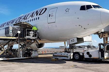 Ein Flugzeug der Air New Zealand vor dem Abflug nach Frankfurt am Main am Flughafen von Auckland. Foto: -/Air New Zealand/AP/dpa