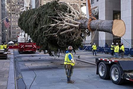 Auch in diesem Jahr schmückt wieder ein riesiger Weihnachtsbaum New York. Foto: Craig Ruttle/FR61802 AP/dpa