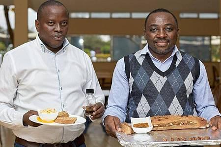 Die Insektenforscher Xavier Cheseto (l) und Chrysantus Tanga haben Wüstenheuschreckenöl entwickelt, das sich zum Backen von Brot eignet. Foto: Armstrong Too kikambala Road/dpa