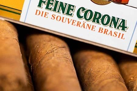 """Zigarren im Format """"Feine Corona"""" liegen in einer Schachtel in einem Tabakgeschäft. Foto: Rolf Vennenbernd/dpa"""