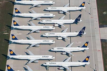 Berlin will die schwer angeschlagene Lufthansa mit einem neun Milliarden Euro umfassenden Hilfspaket unterstützen. Foto: Tino Schöning/dpa-Zentralbild/dpa