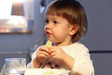 Spezielle Fertiggerichte für Kinder sind oft überflüssig. Bereits ab dem ersten Lebensjahr können die Kleinen normale Familienkost mitessen. Foto: Bodo Marks/dpa-tmn