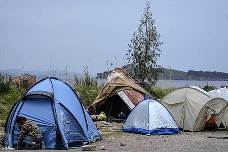 Zelte, in denen Flüchtlinge leben, im Dorf Petra auf der nordöstlichen Ägäisinsel Lesbos ein. Foto: Panagiotis Balaskas/AP/dpa
