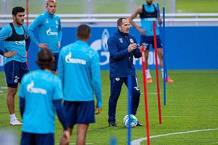 Trainer Manuel Baum (2.v.r.) feiert beim FCSchalke 04 sein Debüt. Foto: Guido Kirchner/dpa