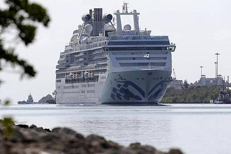 Die «Coral Princess» fährt im Hafen von Miami ein. Foto: Lynne Sladky/AP/dpa
