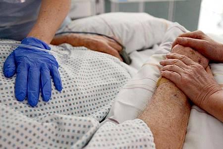 Eine UKE-Studie kommt zu dem Ergebnis: Sars-CoV-2 kann Herzzellen infizieren und sich darin vermehren. Foto: Patrick Seeger/dpa