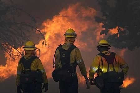Das Bobcat-Feuer brennt in der Gegend von Juniper Hills im Antelope Valley weiter. Foto: Marcio Jose Sanchez/AP/dpa