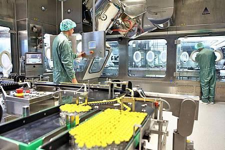 Mitarbeiter des Pharmaunternehmens IDT Biologika arbeiten in der Produktion von Impfstoffen. Foto: Jan Woitas/dpa