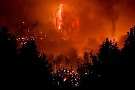 Der Westen der USA kämpft weiter gegen extreme Brände, die Ängste vor den Folgen des Klimawandels schüren. US-Präsident Trump bewertet die Lage anders - und stellt Erkenntnisse der Wissenschaft in Frage. Foto: Will Lester/Orange County Register via ZUMA/dpa