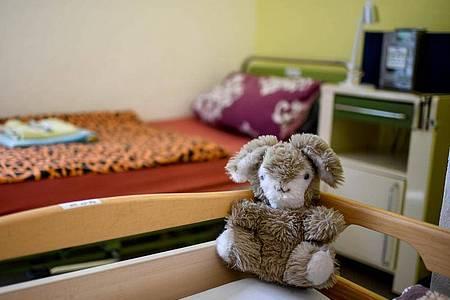 Ein Stofftier sitzt auf einem Bett in der der laut Senatsverwaltung bundesweit ersten Quarantäne-Station für Obdachlose. Foto: Britta Pedersen/dpa-Zentralbild/dpa