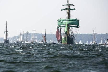 Windjammerparade: Traditionssegler auf Kurs in der Kieler Förde. Foto: Frank Molter/dpa