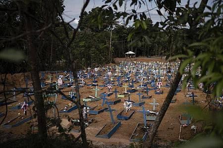 Frische Gräber auf einem Friedhof in Manaus. Foto: Felipe Dana/AP/dpa