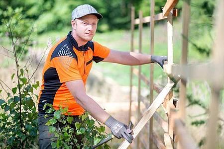 Jesco Ihme macht eine Ausbildung zum Forstwirt - der 30-Jährige ist gerade im zweiten Lehrjahr. Foto: Hauke-Christian Dittrich/dpa-tmn
