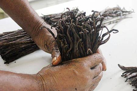 Beim Weltmarktpreis für Vanille zeichnet sich nach jahrelanger Verteuerung Entspannung ab. Foto: Laetitia Bezain/dpa