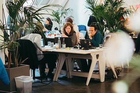 Ausbildung, Studium oder eine «Druckbetankung»: Auch in mehrwöchigen Kursen lassen sich die Grundlagen der Softwareentwicklung erlernen. Foto: Le Wagon/dpa-tmn