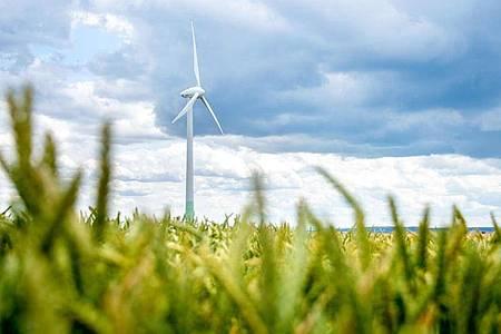 Der von Windkraftanlagen an Land geht weiterhin schleppend voran. Foto: Hauke-Christian Dittrich/dpa