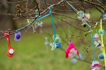 Bunte Schnuller hängen an einem Baum. Früher wurden mehr Kinder im Frühjahr geboren, heute im Sommer. Doch warum?. Foto: Hauke-Christian Dittrich/dpa
