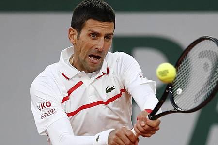 Novak Djokovic musste im Viertelfinale ordentlich kämpfen. Foto: Christophe Ena/AP/dpa