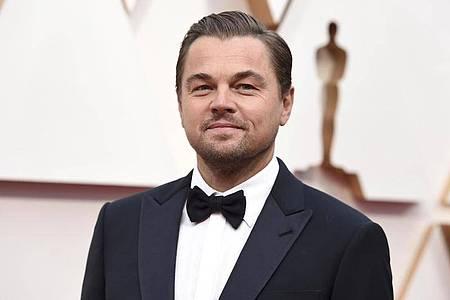 Schauspieler Leonardo DiCaprio plant einen Spielfilm über bedrohte Gorillas. Foto: Jordan Strauss/Invision/AP/dpa