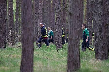 Einsatzkräfte suchen in einem Waldgebiet bei Wilhelmshof ein vermisstes Mädchen. Foto: Lukas Schulze/dpa