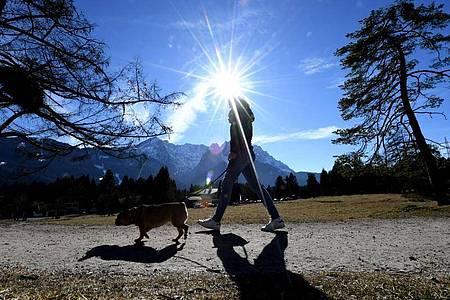 Eine Frau bei strahlendem Sonnenschein unterwegs ist mit ihrem Hund am Kramerplateauweg in Bayern. Foto: Angelika Warmuth/dpa