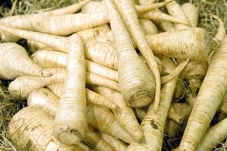 Wurzelpetersilie (fachsprachlich auch: Petroselinum crispum subsp. tuberosum) sorgt in Suppen oder in Kartoffelpürees für einen intensiven Geschmack. Foto: Andrea Warnecke/dpa-tmn