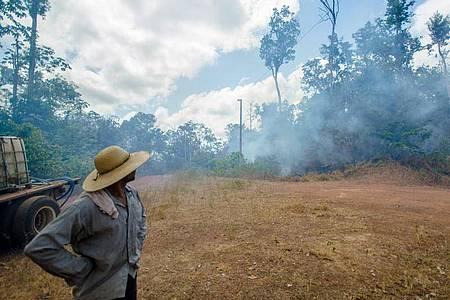 Ein brasilianischer Farmer beobachtet einen Waldbrand bei Alto Rio Guama. Foto: João Paulo Guimarães/dpa