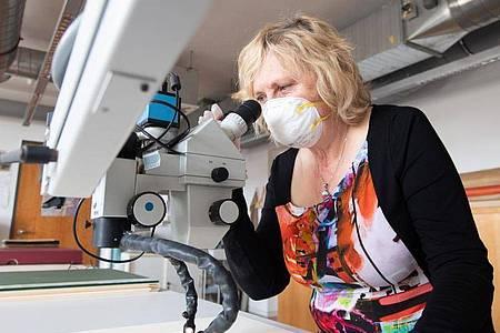 Wiebke Schneider, Restauratorin im Kupferstich-Kabinett, inspiziert mit einem Mikroskop die Zeichnung «Allegorie des Schlafs» von Taddeo Zuccari. Foto: Sebastian Kahnert/dpa-Zentralbild/dpa
