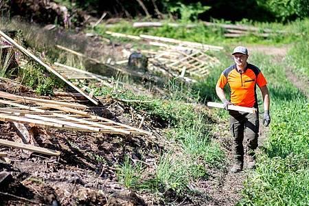 Jesco Ihme ist immer früh auf den Beinen - die Arbeit beginnt für den Forstwirt in Ausbildung meist mit Sonnenaufgang. Foto: Hauke-Christian Dittrich/dpa-tmn