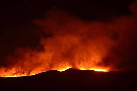 Hell scheinen die Falmmen eines Feuers auf dem Kilimandscharo. Rettungsdienste versuchten, das Feuer auf dem mit 5895 Metern höchsten Berg Afrikas zu löschen. Foto: Thomas Becker/dpa