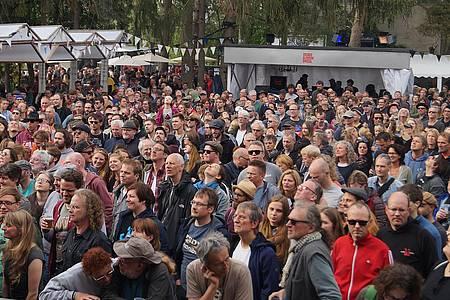 Publikum beim Orange Blossom Special