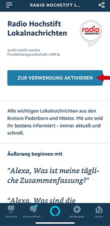 Anleitung Lokalnachrichten-Skill